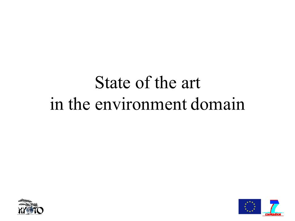 State of the art in the environment domain