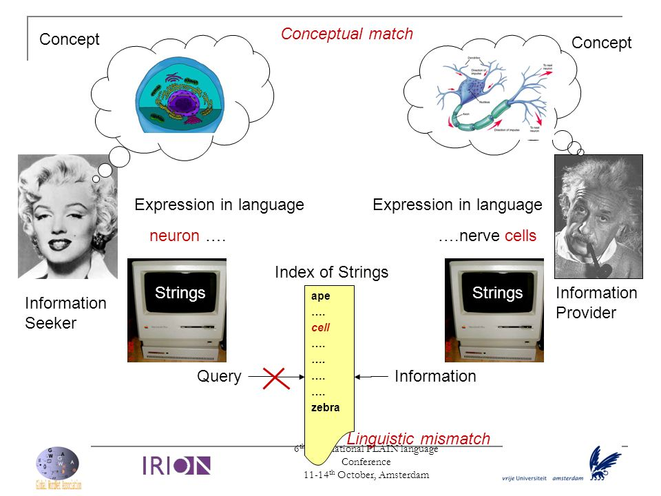 6 th International PLAIN language Conference 11-14 th October, Amsterdam Strings Expression in language neuron …. Expression in language ….nerve cells
