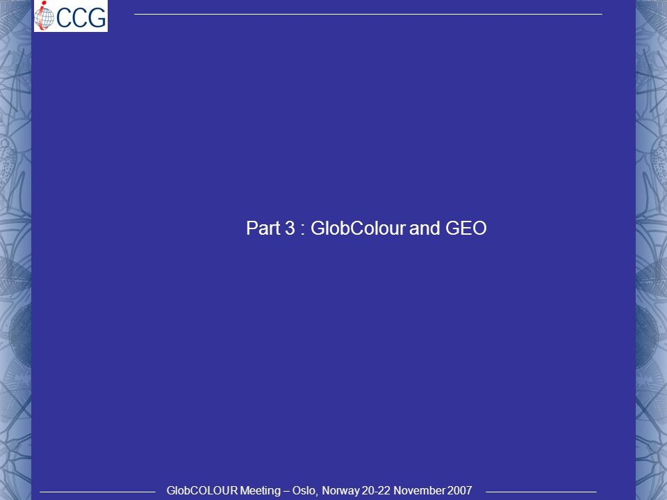 GlobCOLOUR Meeting – Oslo, Norway 20-22 November 2007 Part 3 : GlobColour and GEO