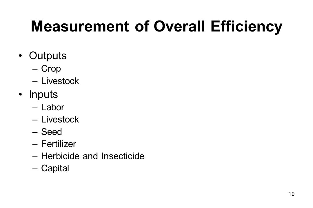 Measurement of Overall Efficiency Outputs –Crop –Livestock Inputs –Labor –Livestock –Seed –Fertilizer –Herbicide and Insecticide –Capital 19