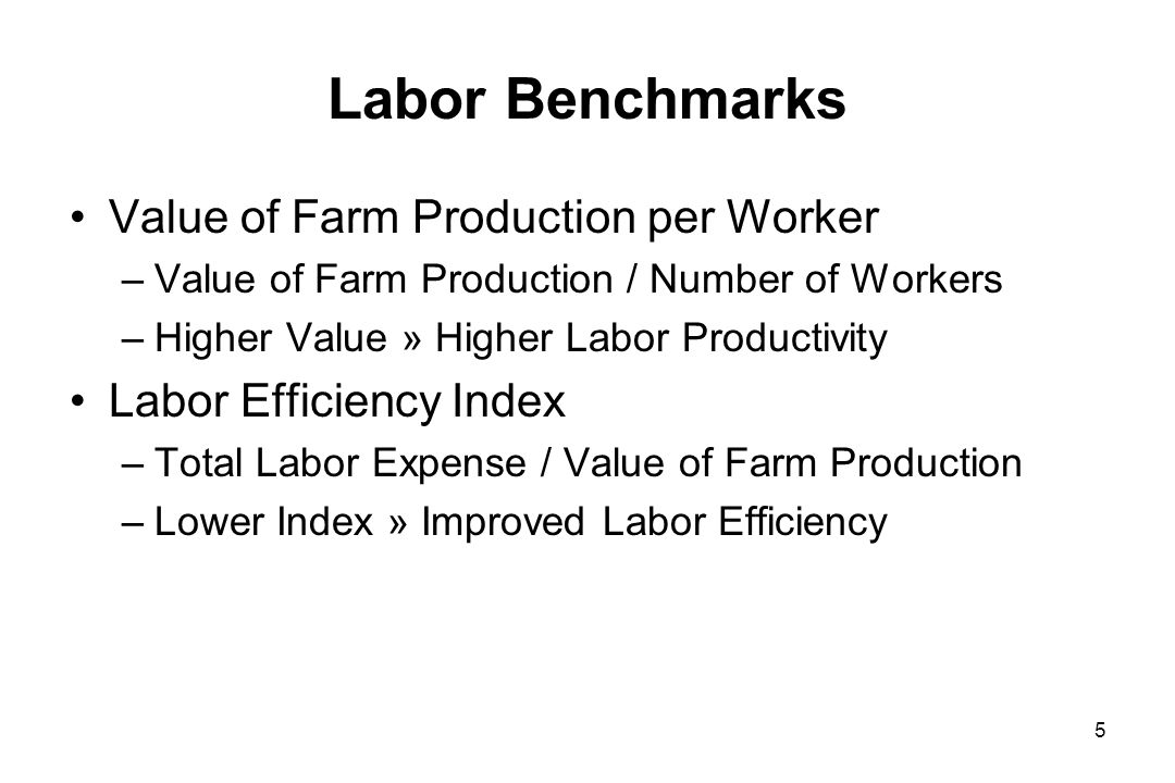 Labor Benchmarks Value of Farm Production per Worker –Value of Farm Production / Number of Workers –Higher Value » Higher Labor Productivity Labor Efficiency Index –Total Labor Expense / Value of Farm Production –Lower Index » Improved Labor Efficiency 5