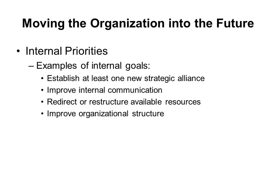 Moving the Organization into the Future Internal Priorities –Examples of internal goals: Establish at least one new strategic alliance Improve interna
