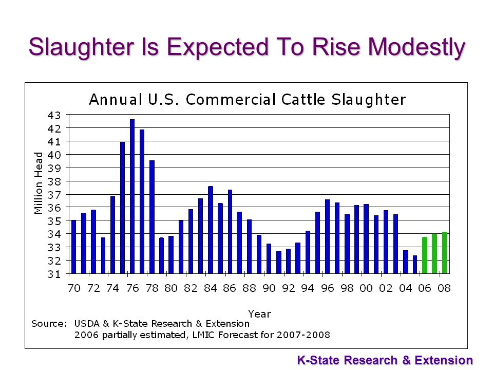 36 K-State Research & Extension Slaughter Is Expected To Rise Modestly