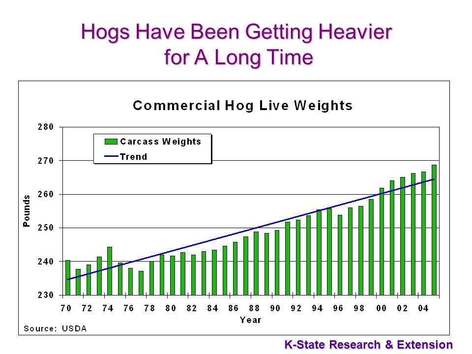 K-State Research & Extension Hogs Have Been Getting Heavier for A Long Time