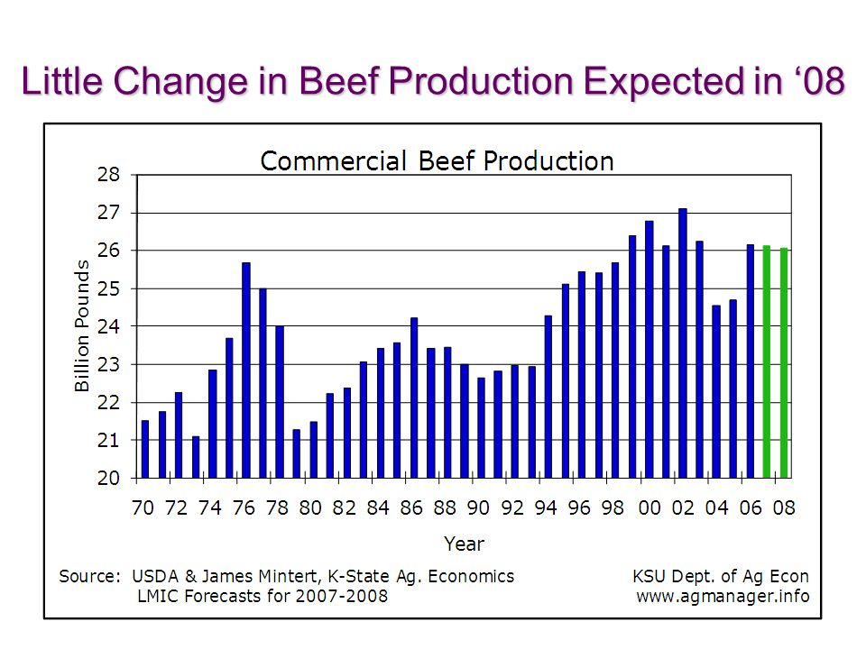 Little Change in Beef Production Expected in 08