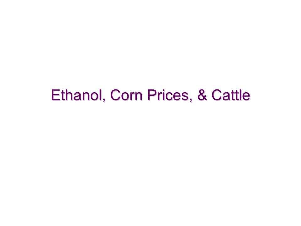 33 Ethanol, Corn Prices, & Cattle