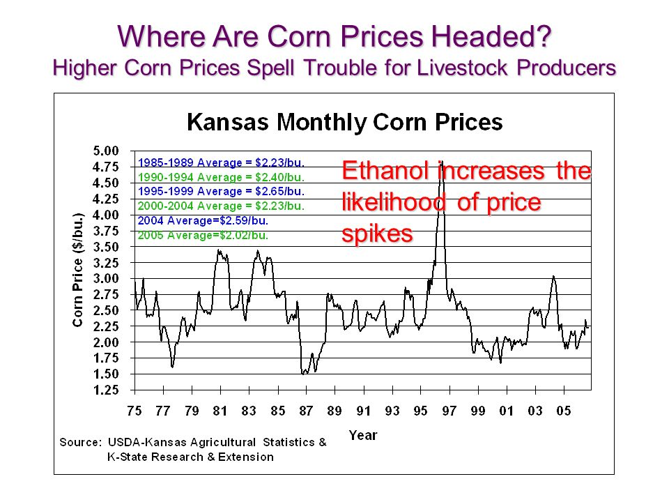 Where Are Corn Prices Headed.