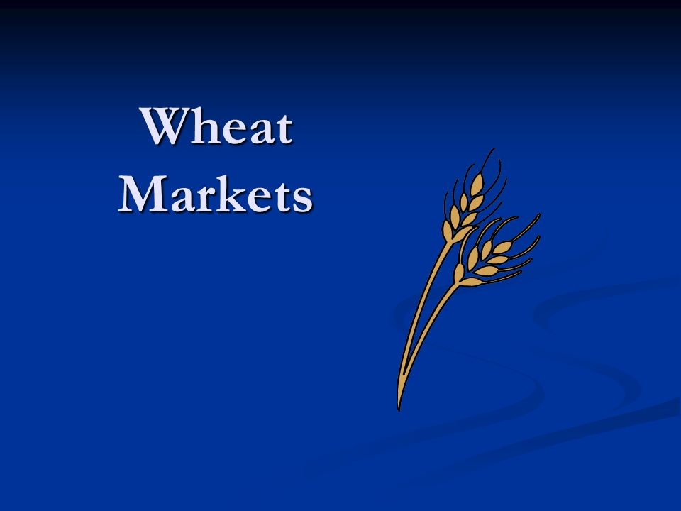 Wheat Markets