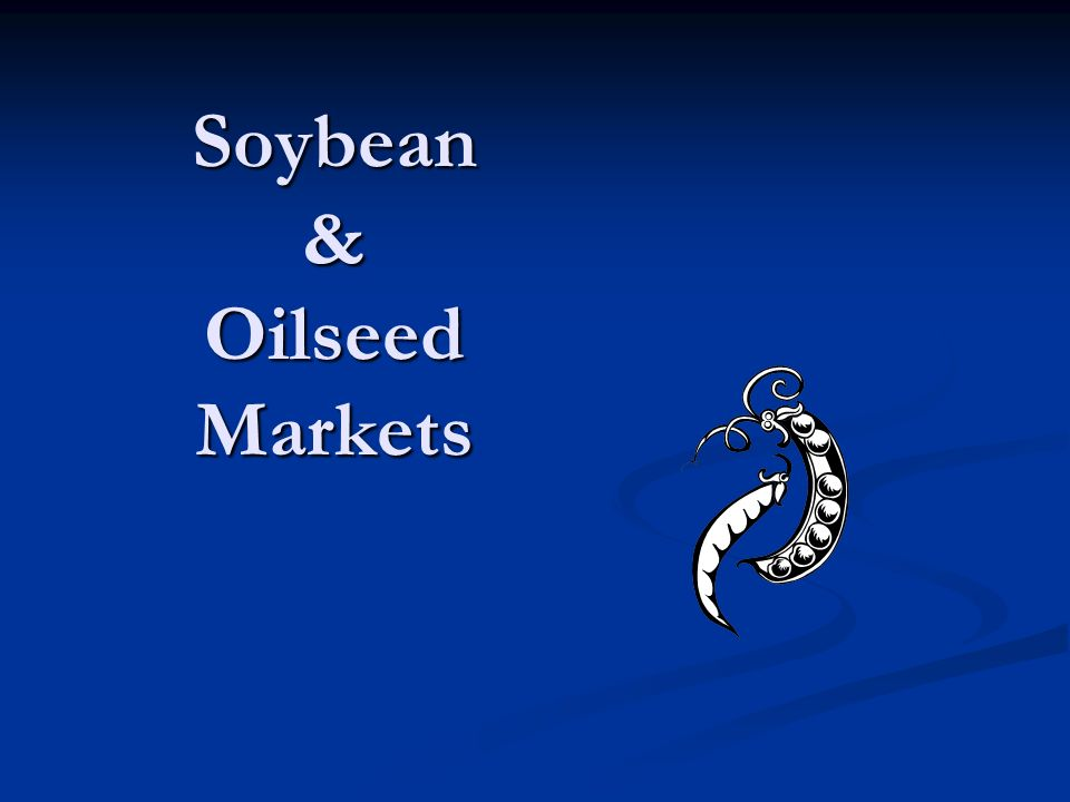 Soybean & Oilseed Markets