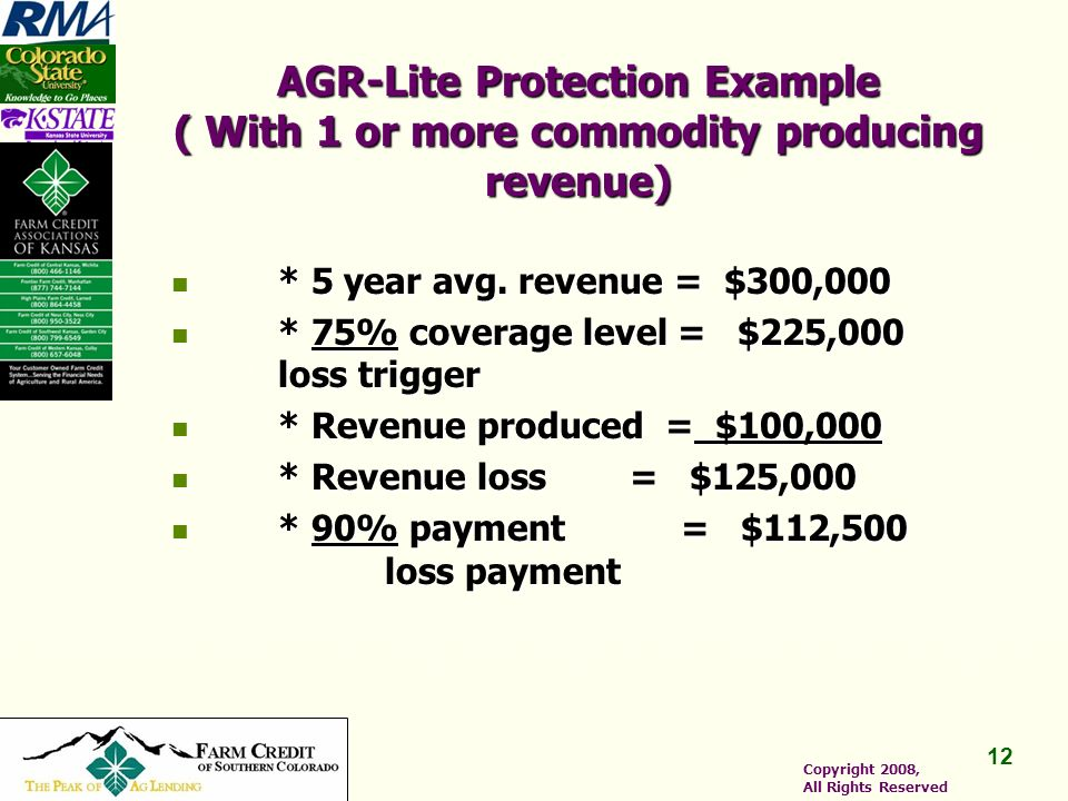 12 Copyright 2008, All Rights Reserved AGR-Lite Protection Example ( With 1 or more commodity producing revenue) * 5 year avg.