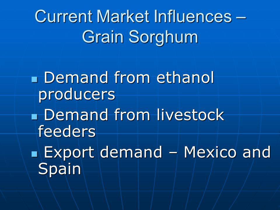 Current Market Influences – Grain Sorghum Demand from ethanol producers Demand from ethanol producers Demand from livestock feeders Demand from livestock feeders Export demand – Mexico and Spain Export demand – Mexico and Spain