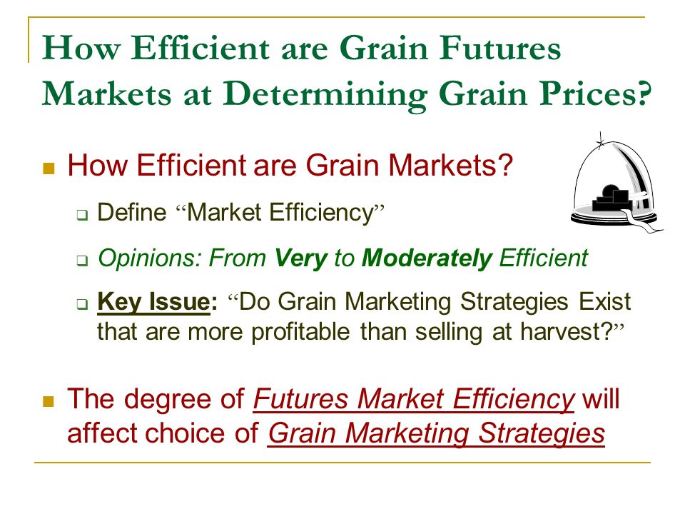 How Efficient are Grain Futures Markets at Determining Grain Prices.