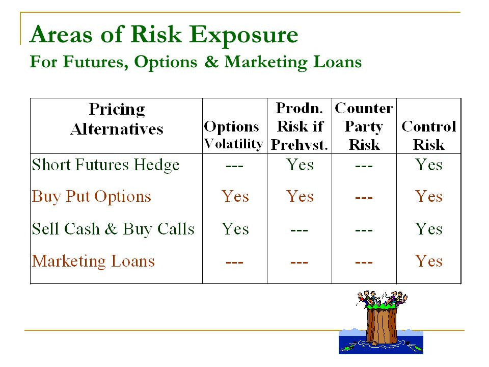 Areas of Risk Exposure For Futures, Options & Marketing Loans