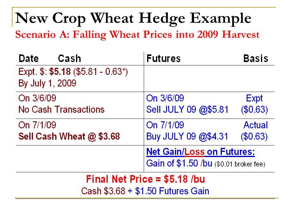 New Crop Wheat Hedge Example Scenario A: Falling Wheat Prices into 2009 Harvest