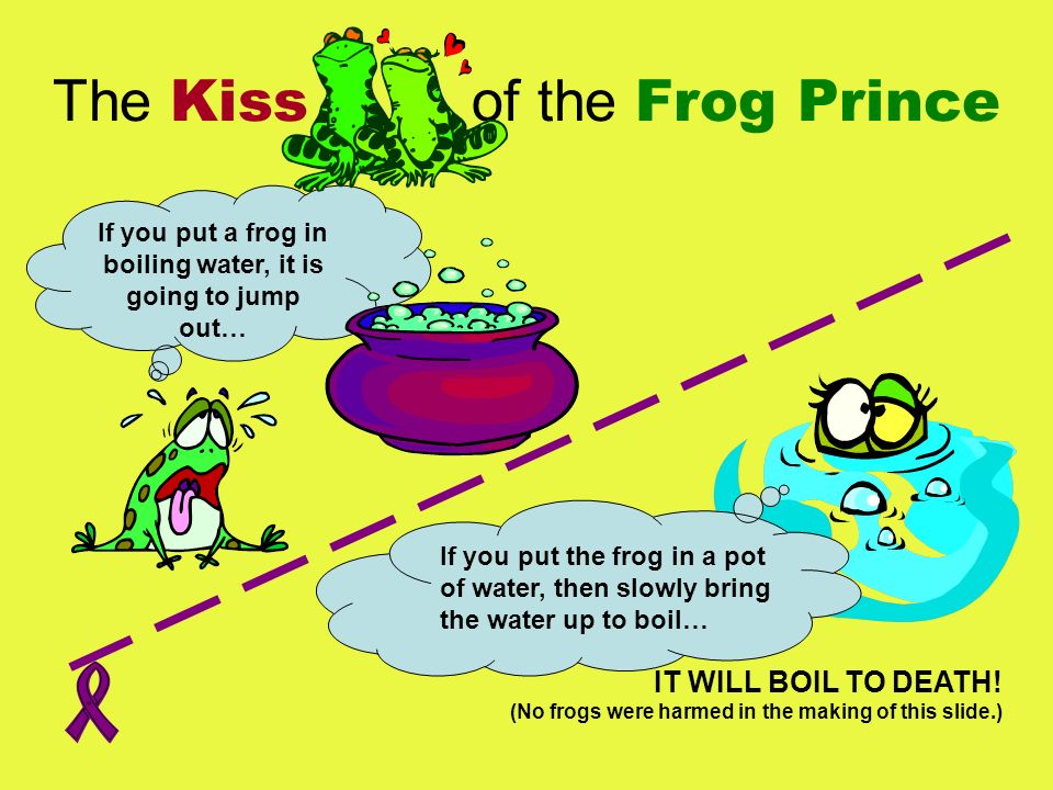 If you put a frog in boiling water, it is going to jump out… The Kiss of the Frog Prince IT WILL BOIL TO DEATH! (No frogs were harmed in the making of