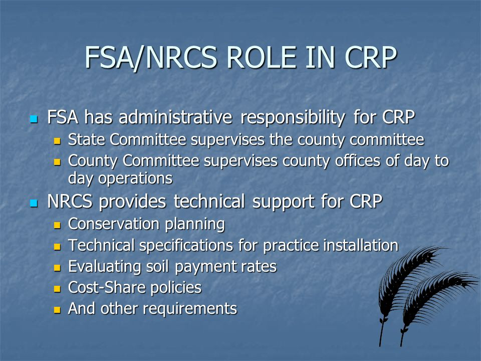 FSA/NRCS ROLE IN CRP FSA has administrative responsibility for CRP FSA has administrative responsibility for CRP State Committee supervises the county committee State Committee supervises the county committee County Committee supervises county offices of day to day operations County Committee supervises county offices of day to day operations NRCS provides technical support for CRP NRCS provides technical support for CRP Conservation planning Conservation planning Technical specifications for practice installation Technical specifications for practice installation Evaluating soil payment rates Evaluating soil payment rates Cost-Share policies Cost-Share policies And other requirements And other requirements