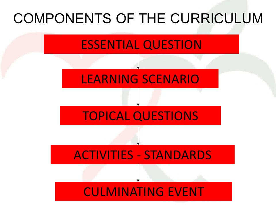 COMPONENTS OF THE CURRICULUM ESSENTIAL QUESTION LEARNING SCENARIO TOPICAL QUESTIONS ACTIVITIES - STANDARDS CULMINATING EVENT