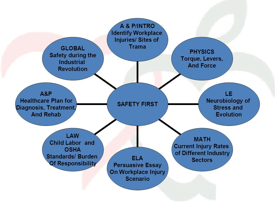 SAFETY FIRST A & P/INTRO Identify Workplace Injuries/ Sites of Trama PHYSICS Torque, Levers, And Force LE Neurobiology of Stress and Evolution MATH Cu