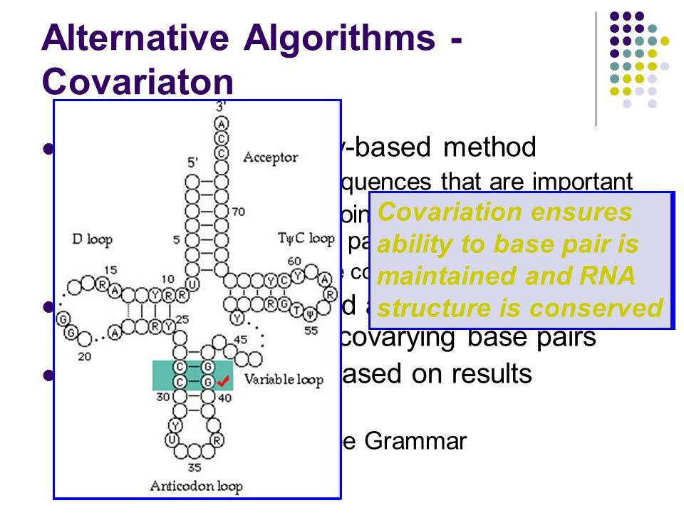 Alternative Algorithms - Covariaton Incorporates Similarity-based method Evolution maintains sequences that are important Change in sequence coincides