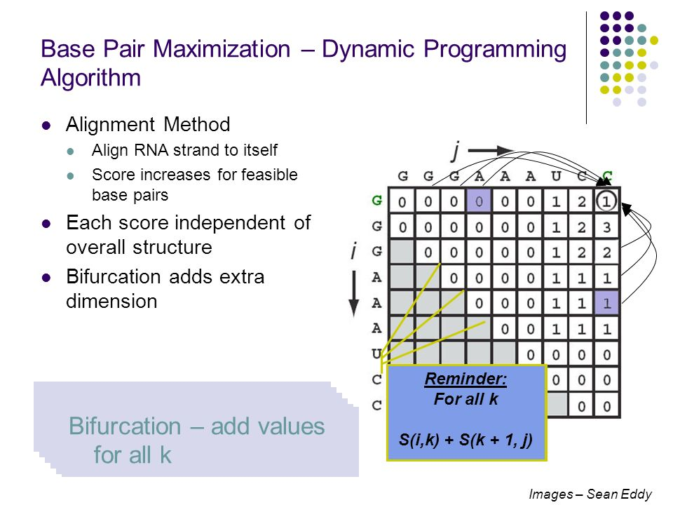 Base Pair Maximization – Dynamic Programming Algorithm Alignment Method Align RNA strand to itself Score increases for feasible base pairs Each score