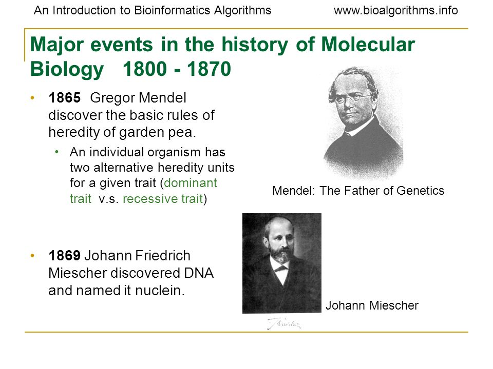 www.bioalgorithms.infoAn Introduction to Bioinformatics Algorithms Section 4: What Molecule Codes For Genes?