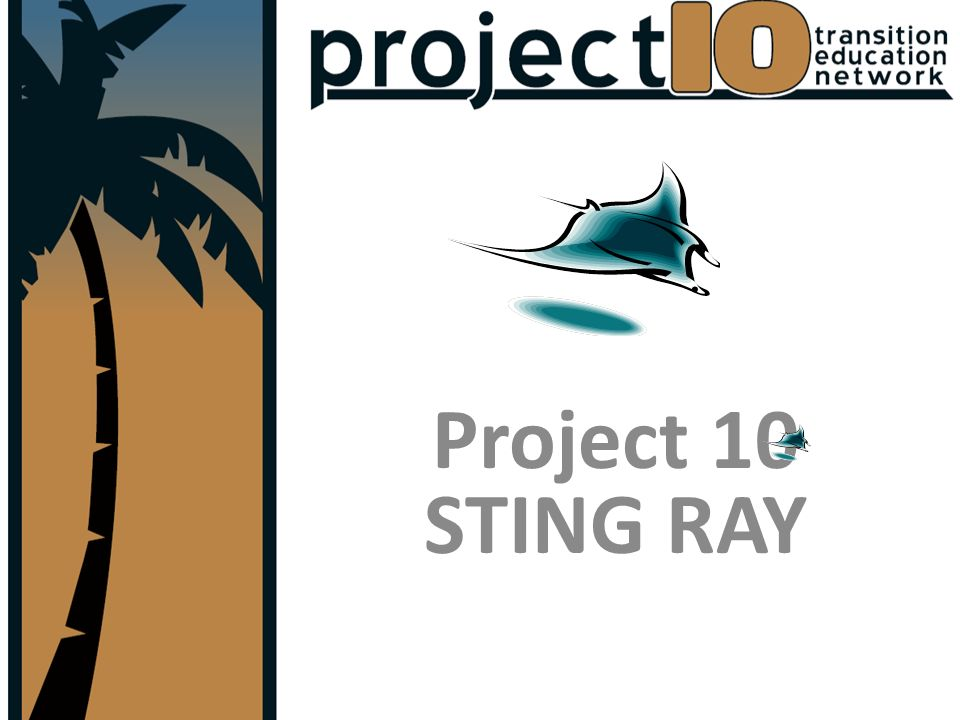 Project 10 STING RAY