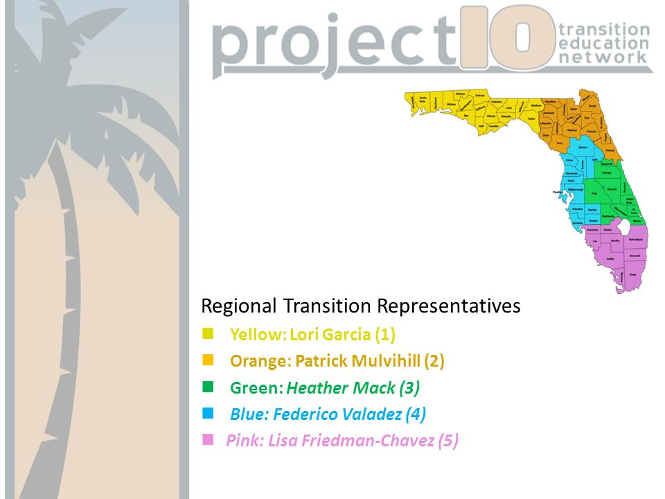 Regional Transition Representatives Yellow: Lori Garcia (1) Orange: Patrick Mulvihill (2) Green: Heather Mack (3) Blue: Federico Valadez (4) Pink: Lisa Friedman-Chavez (5)