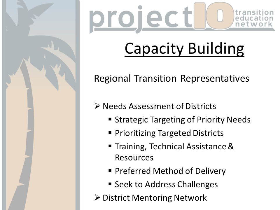 Capacity Building Regional Transition Representatives Needs Assessment of Districts Strategic Targeting of Priority Needs Prioritizing Targeted Districts Training, Technical Assistance & Resources Preferred Method of Delivery Seek to Address Challenges District Mentoring Network