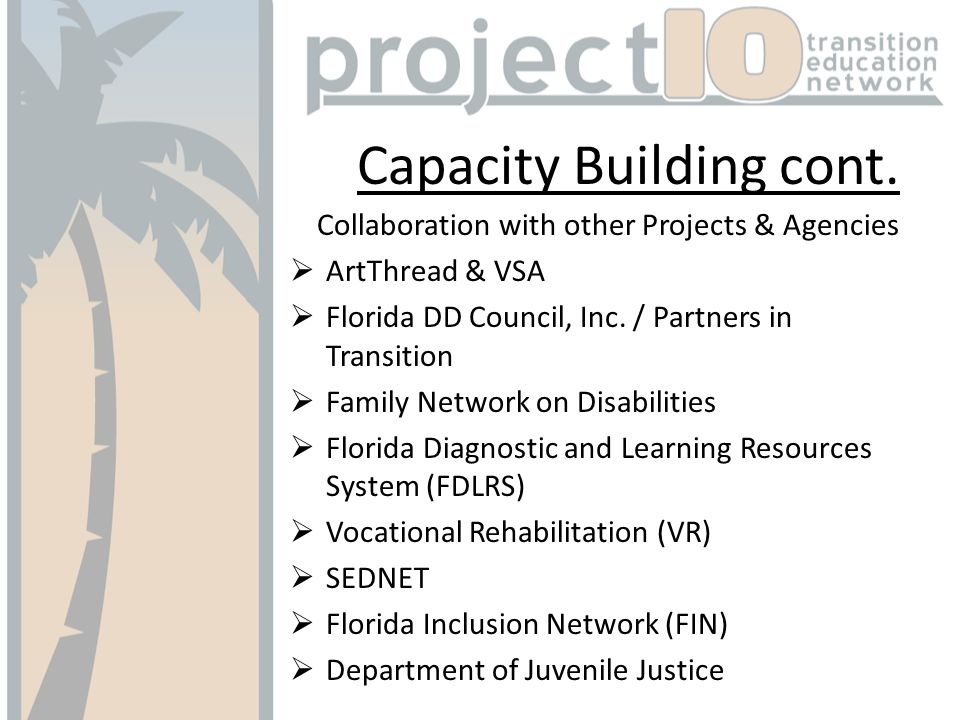 Capacity Building cont. Collaboration with other Projects & Agencies ArtThread & VSA Florida DD Council, Inc. / Partners in Transition Family Network