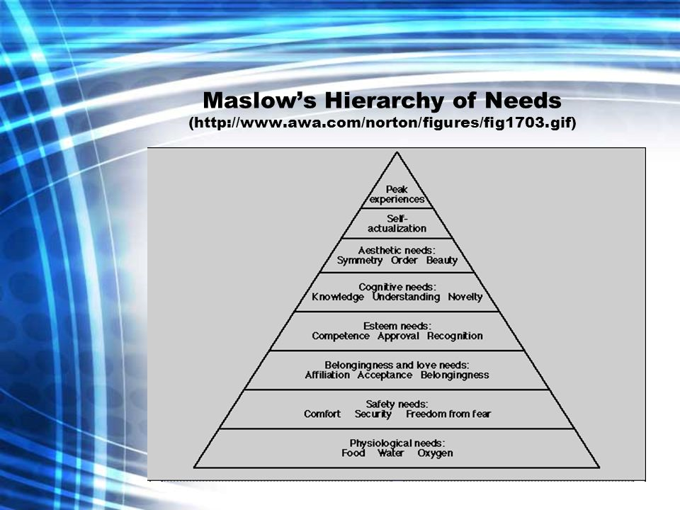Maslows Hierarchy of Needs (http://www.awa.com/norton/figures/fig1703.gif)