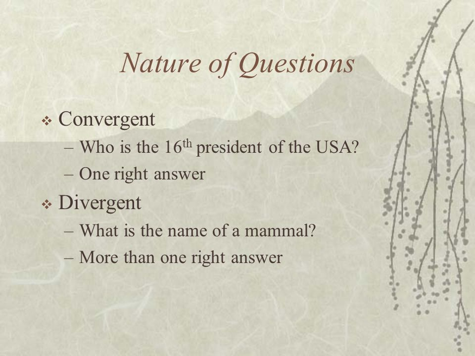 Nature of Questions Convergent –Who is the 16 th president of the USA? –One right answer Divergent –What is the name of a mammal? –More than one right