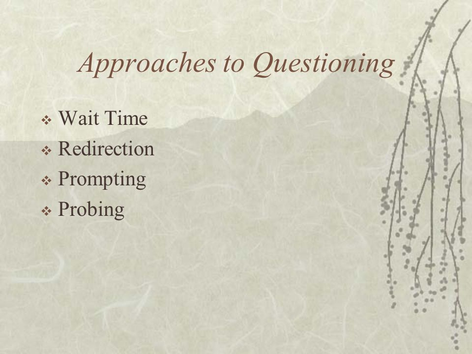 Approaches to Questioning Wait Time Redirection Prompting Probing