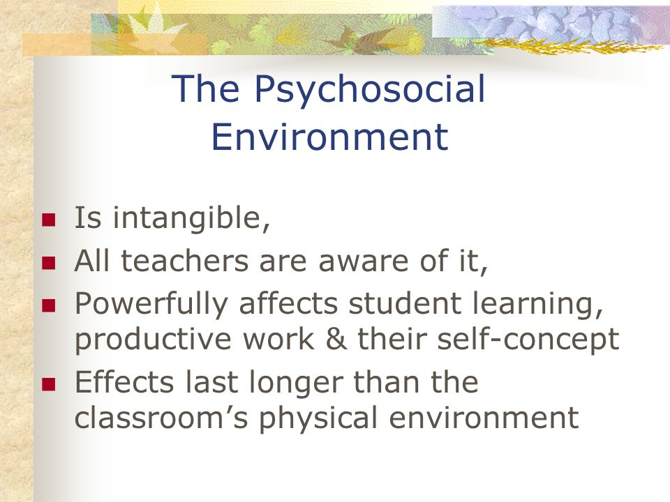 The Psychosocial Environment Is intangible, All teachers are aware of it, Powerfully affects student learning, productive work & their self-concept Ef