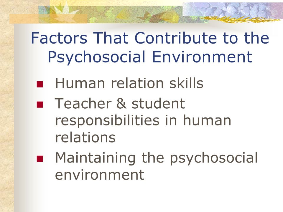 Factors That Contribute to the Psychosocial Environment Human relation skills Teacher & student responsibilities in human relations Maintaining the ps