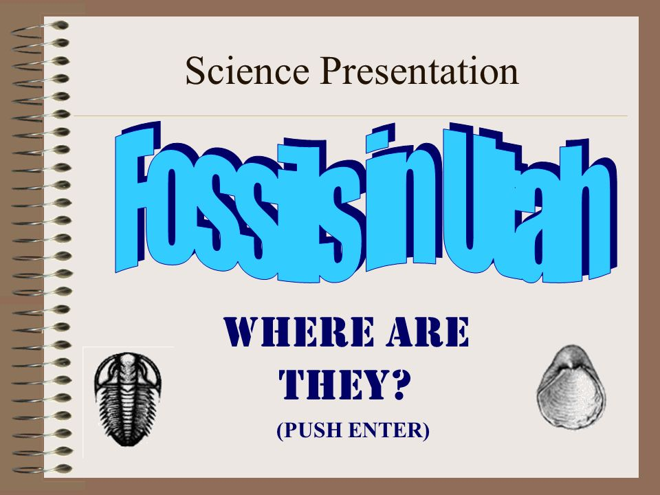Science Presentation Where are they? (PUSH ENTER)