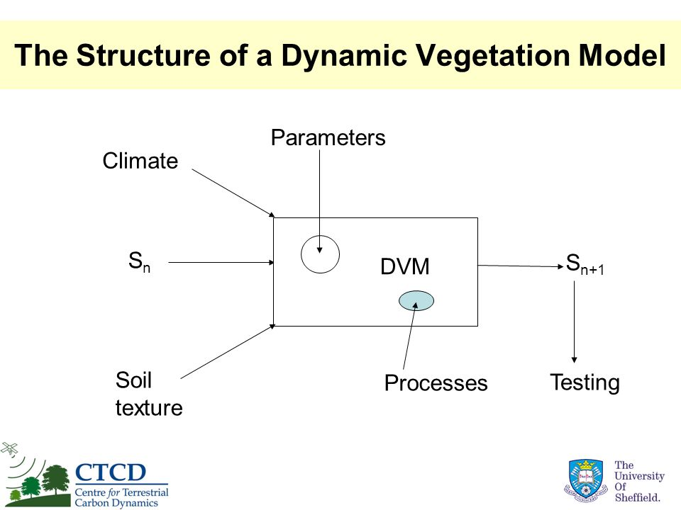 How EO data can affect DVM calculations Parameters DVM Climate Soils SnSn S n+1 Processes Observable Land cover Forest age Phenology Snow water Burnt area Testing: Radiance fAPAR Possible feedback fAPAR