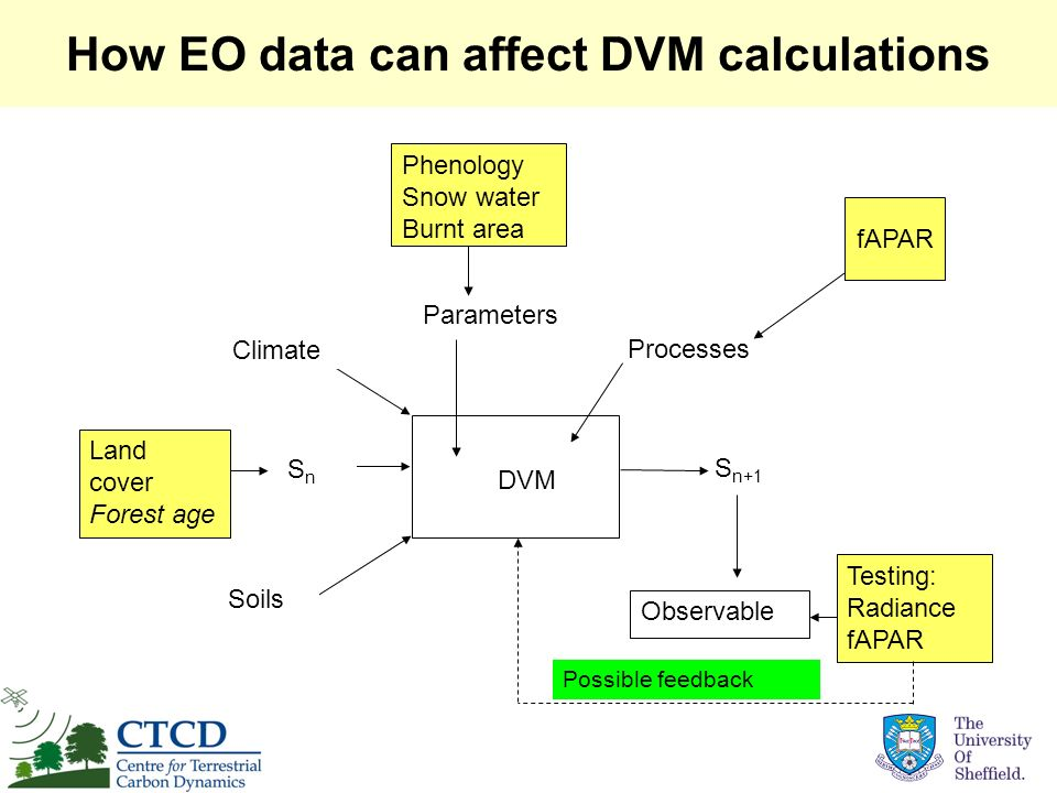 How EO data can affect DVM calculations Parameters DVM Climate Soils SnSn S n+1 Processes Observable Land cover Forest age Phenology Snow water Burnt