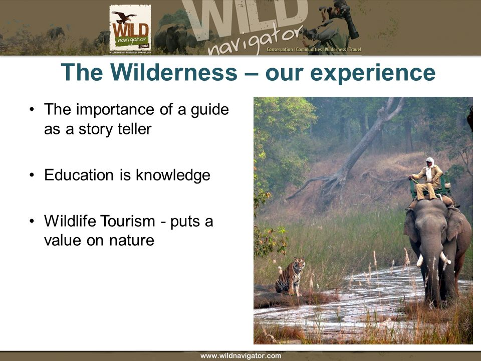 The Wilderness – our experience The importance of a guide as a story teller Education is knowledge Wildlife Tourism - puts a value on nature