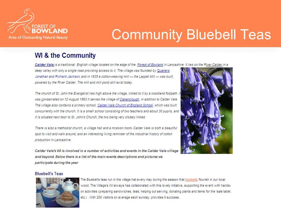 Community Bluebell Teas