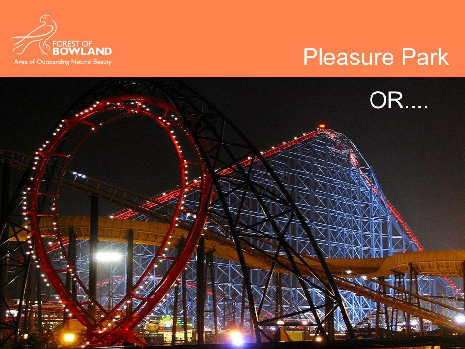 Pleasure Park OR....
