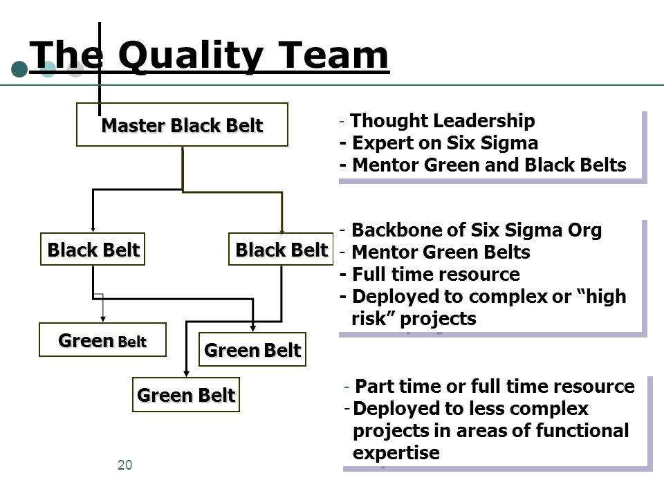 20 The Quality Team Master Black Belt Black Belt Green Belt - Thought Leadership - Expert on Six Sigma - Mentor Green and Black Belts - Thought Leader