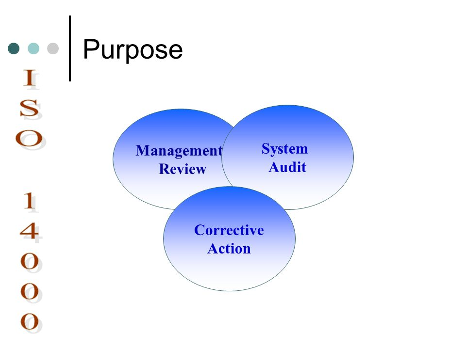 Purpose Management Review System Audit Corrective Action