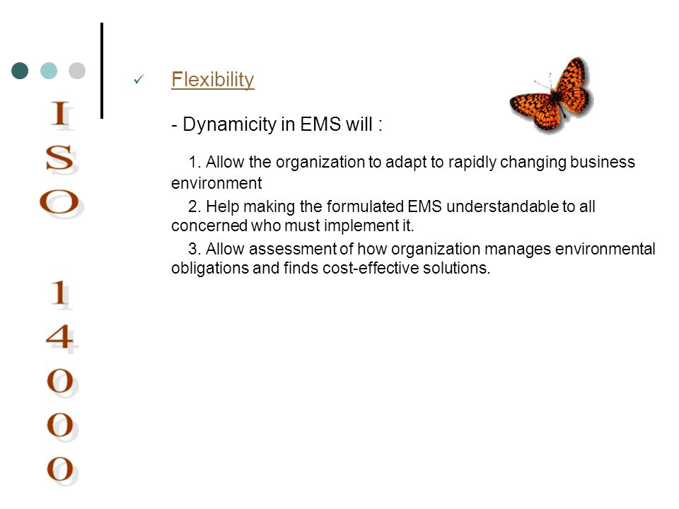 Flexibility - Dynamicity in EMS will : 1. Allow the organization to adapt to rapidly changing business environment 2. Help making the formulated EMS u