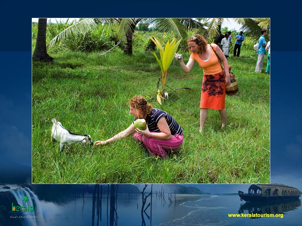 www.keralatourism.org