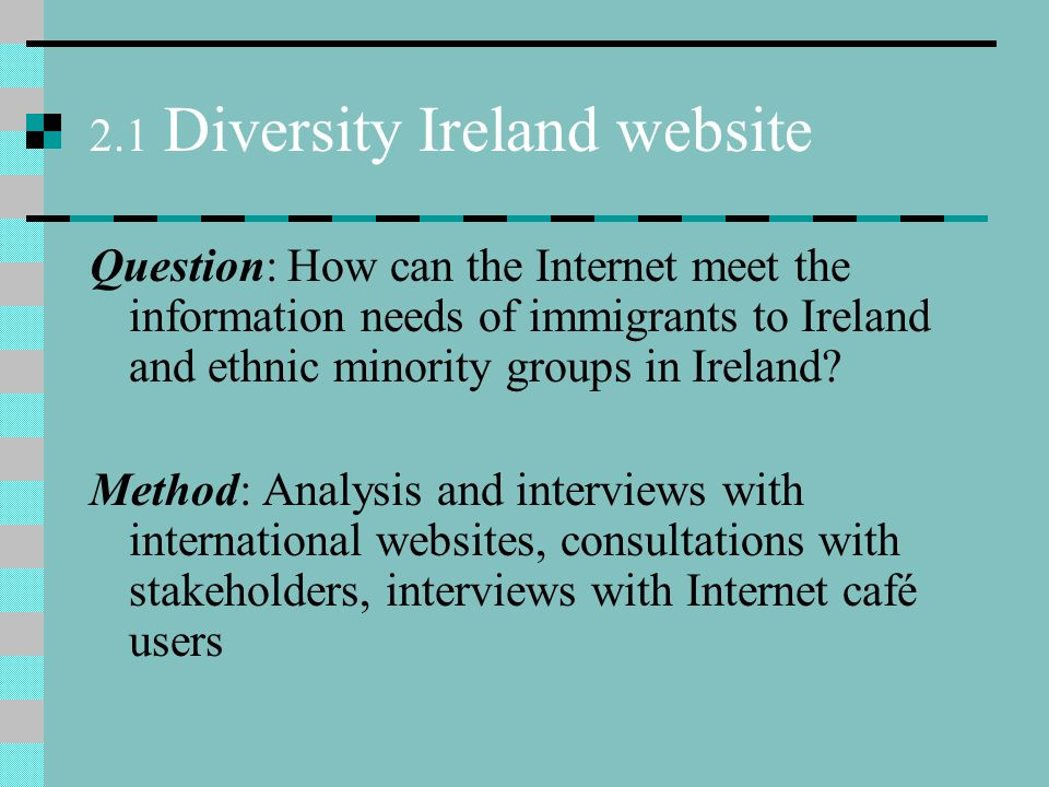 2.1 Diversity Ireland website Question: How can the Internet meet the information needs of immigrants to Ireland and ethnic minority groups in Ireland.