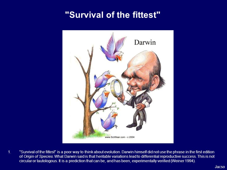 Survival of the fittest 1. Survival of the fittest is a poor way to think about evolution.