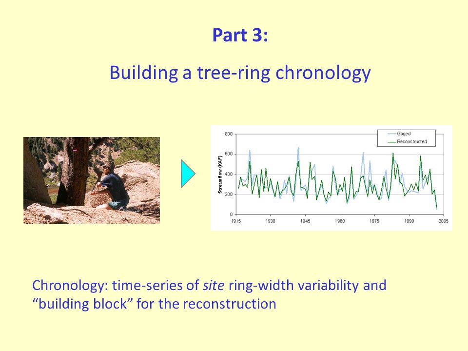 Part 3: Building a tree-ring chronology Chronology: time-series of site ring-width variability and building block for the reconstruction