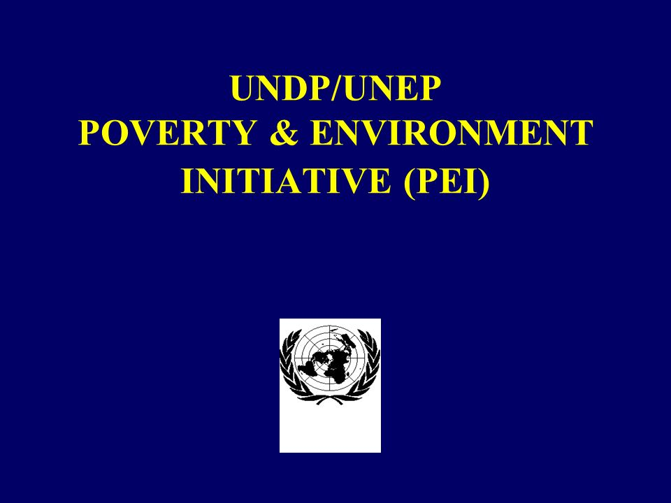 UNDP/UNEP POVERTY & ENVIRONMENT INITIATIVE (PEI)