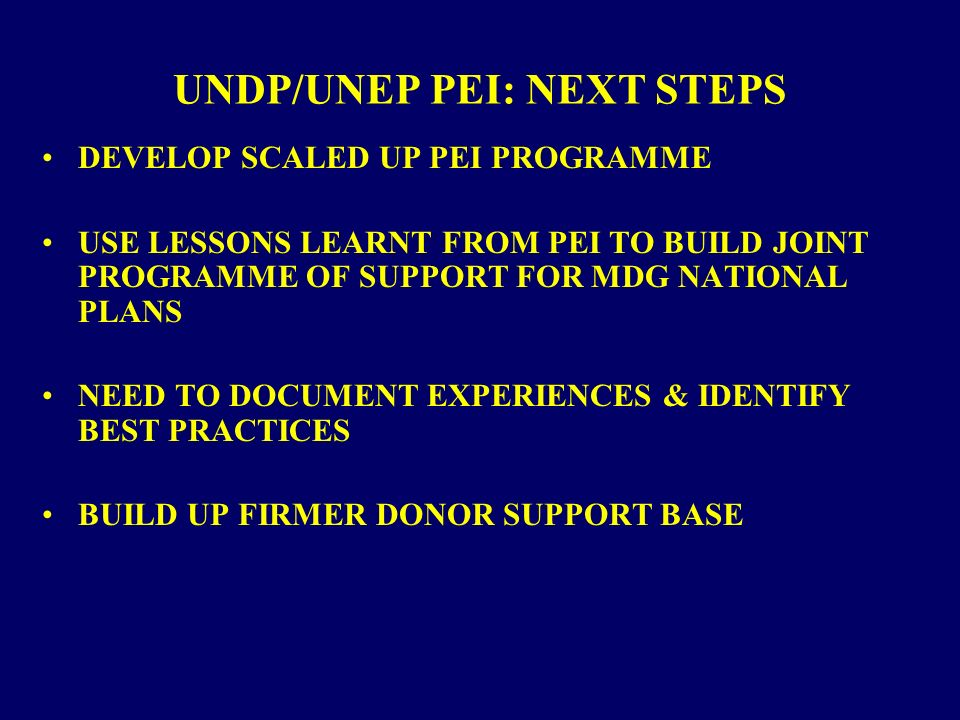 UNDP/UNEP PEI: NEXT STEPS DEVELOP SCALED UP PEI PROGRAMME USE LESSONS LEARNT FROM PEI TO BUILD JOINT PROGRAMME OF SUPPORT FOR MDG NATIONAL PLANS NEED TO DOCUMENT EXPERIENCES & IDENTIFY BEST PRACTICES BUILD UP FIRMER DONOR SUPPORT BASE