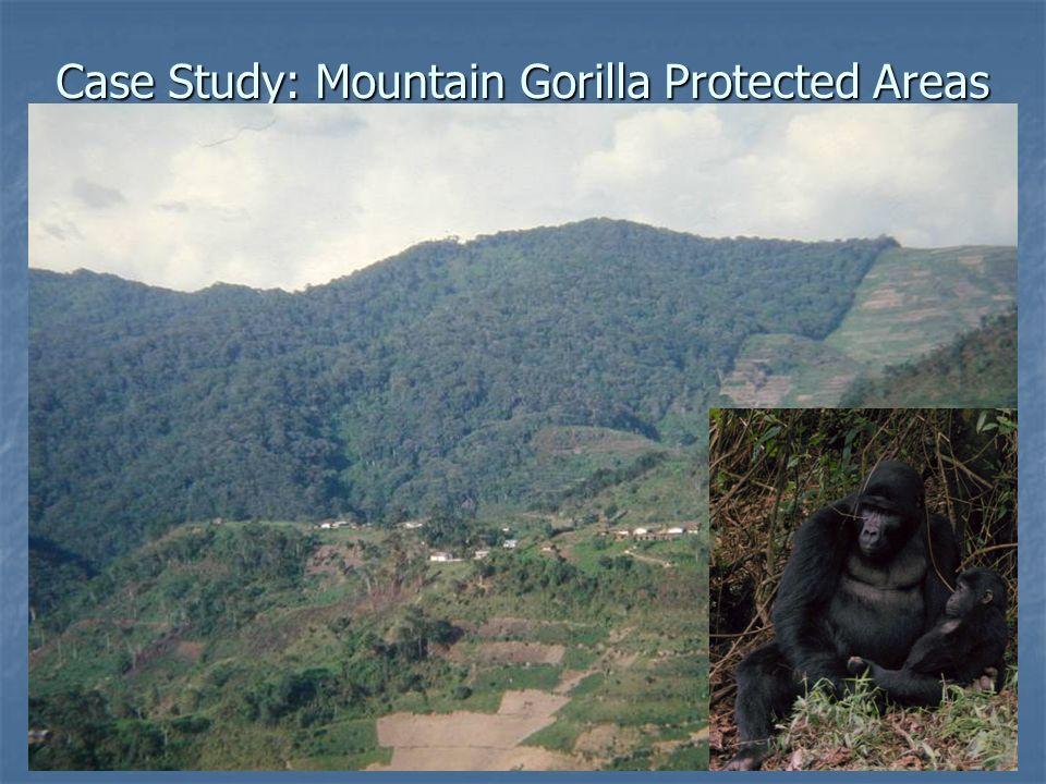 Case Study: Mountain Gorilla Protected Areas